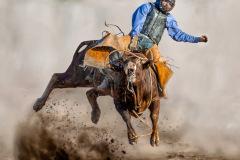 A Powerful Cowboy
